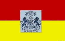 Ambliara (Princely State) flag