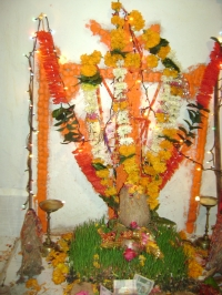 Nagnecha Temple Kod