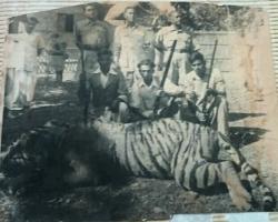 Kumar Subodh Chandra Singh Roy at Tiger shoot near Comilla