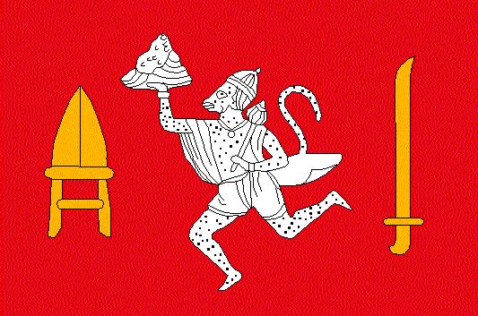 Rajgarh Flag